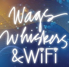 Wags, Whiskers and Wifi 6 bottle Bundle